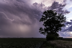august storm tree and lightning-1079