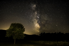 Ledges milky way and tree-7902