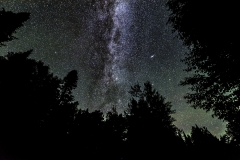 Milky Way Grand Marais stars forest night