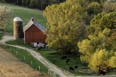 Balltown Iowa farm