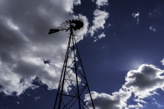 green co windmill-4780
