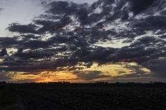 Sunset on the farm HR-0386