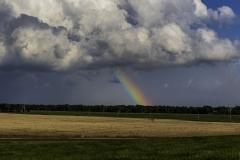 Kansas rainbow-2439